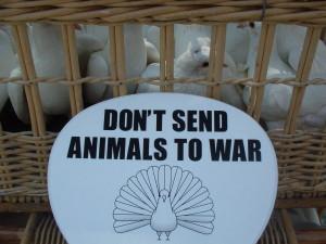 動物のための反戦